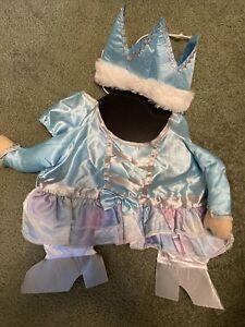 NWT Celebrate Brand Princess Pet Costume sz Large