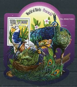 SIERRA LEONE 2015 WORLD OF BIRDS PEACOCKS SOUVENIR SHEET MINT NH
