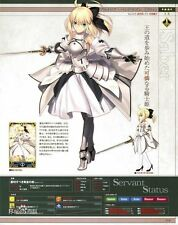 Fate/Stay night  Saber lily  Cosplay Costume  Custom