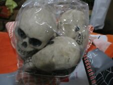 Pottery Barn mini skulls Halloween Vase Filler set 5 New