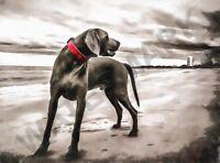 weimaraner dog on Beach painting WALL POSTER ART PRINT LF3471