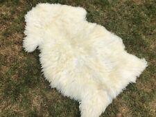 Small Sheepskin Rug Single Pelt Ivory Sheep Fur Wool 2x3 Natural