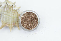 Champagne/Rose Gold Fine Dust Glitter Nail Art Eye Shadow buy 3 + 3 free