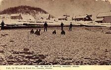 An Acre Of Herring Fish Douglas Alaska Postcard (c. 1910)