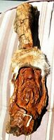 2018 Hand Carved Folk Art Wood Spirits Cottonwood Bark 1800's Mountain Man Scene