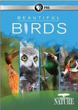 Nature: Beautiful Birds [New DVD] Boxed Set