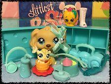 Littlest Pet Shop #748 Cocker Spaniel White Dipped Ears w/ Accessories Shopkins