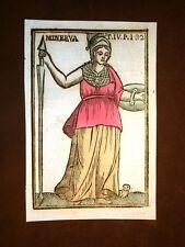 Dea Minerva saggezza Settecentina acquerellata a mano del 1785 Andre Declaustre