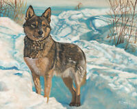 Original Artwork oil painting German shepherd on canvas panel, animal 8x10""
