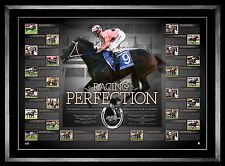 Black Caviar Signed Racing Perfection Retirement Print Framed - Peter Moody