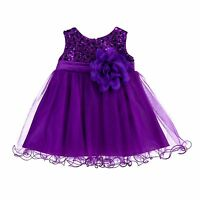 Wedding Sequin Mesh Flower Girl Dress Pageant Birthday Baby Princess Gown B011NF