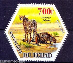 Chad 2014 MNH, Odd Unusual Hexagon, Jaguar, Wild Animals, Wildcats