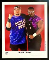 WWE DUDLEY BOYZ P-572 OFFICIAL LICENSED ORIGINAL AUTHENTIC 8X10 PROMO PHOTO
