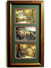 Bengal Tiger Lion Leopard Picture Safari Animals Wild Cats Framed Matted 10X20