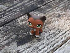 Littlest Pet Shop Custom OOAK LPS Short Hair Cat #675 Savannah Inspired