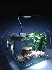 Nano Aquarium Komplettset NEPHRIT, inkl. Deko, Dekoartikel, Dekorationsglas