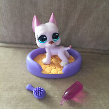 Littlest Pet Shop Pink Great Dane #1022 & Accessories