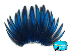 1 Dozen - Kingfisher Blue BLW Whiting Laced Hen Cape Feather Fly Tying Supply