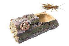 Bosque de Komodo Alimentador doble alimento vivo Dispensador de cricket reptil Alimentación Plato 82960