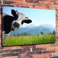 """COOL MUCCA Scatola stampata foto su tela A1.30""""x20"""".30mm TELAIO in profondità cucina fattoria."""