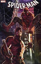 Spider-Man #111 (alemán) Variant-cover lim.444 ex Lee Bermejo comic fest Munich