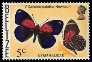 "BELIZE 350 (SG385) - ""Callicore patelina"" Butterfly (pf85961)"