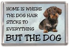 "Dachshund Wire Haired Dog Fridge Magnet ""Home is Where"" Design No 4 by Starprint"