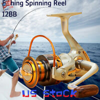 Spinning Reel Freshwater Fishing Saltwater Interchangeable Light Weight Tool US