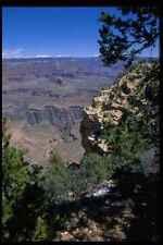 032088 Grand Canyon enmarcado por Rock y arbustos A4 Foto Impresión