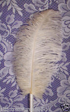 Cream/Almond/Beige Feather Pen Guest~Gift~Personal Pen