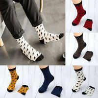 Embroidery Colorful Crow Printing Spring Breathable Cotton Casual Men's Socks