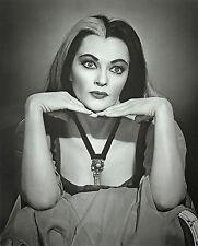 HALLOWEEN ~ LILY MUNSTER ~ YVONNE DE CARLO! ~ VERY NICE PHOTO 8 X 10! F22