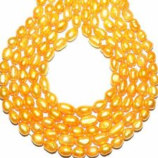 """NP436 Golden Yellow 7mm - 8mm Rice Cultured Freshwater Pearl Gemstone Beads 14"""""""
