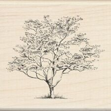 SMALL DOGWOOD Rubber Stamp 60-00212 Inkadinkado Brand NEW! tree grass nature