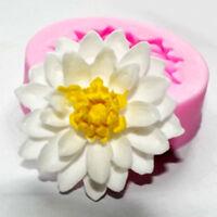 Silikon lotus Form Kitchen Dekoration Sugarsoft Fondant DIY Mini Blume Fondant