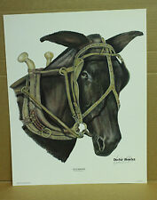 Old Maude by Dexter Bowles Kentucky Artist Mule hanes harness hames hand signed