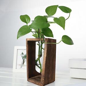 Glass Hydroponic Plant Vase Holder Glass Vase Flower Pot Stand Planter Home