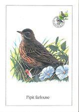 FDC 2920 - Oiseau Buzin sur gravure format A4 !