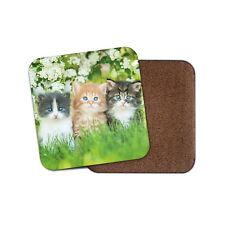 Gorgeous Kittens Coaster - Cute Garden Flowers Mum Auntie Pretty Cats Gift #8663