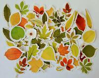 46 Herbstlaub Blätter Blatt Spätsommer Aufkleber Sticker Scrapbooking basteln