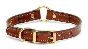 Narrow Leather Feature Dog Collar