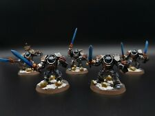 Warhammer 40k Grey Knights Paladin Squad x5 Painted  R1S1B2