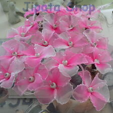 Pink Hibiscus Nylon Party-Wedding-Decoration X-mas 110V Light String