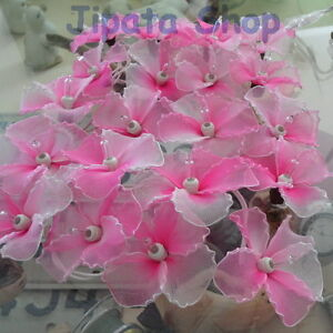 Pink Hibiscus Nylon Party-Wedding-Decoration X-mas 110V Light String