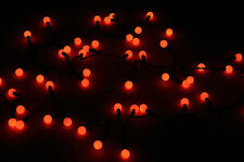 50 Indoor/Dry Outdoor Red LED Globe Ball String Lights, 17FT Black Cord