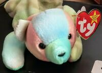 """TY Beanie Baby Babies 1998 / 1999 """"Sammy"""" the Bear *RARE* with Errors *Retired*"""