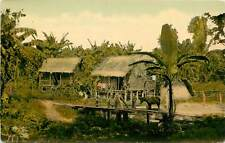 Panama, Canal Zone, A Chinese Farmer's Banana-Plantation 1910's Postcard