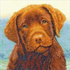 Counted Cross Stitch Kit HOT CHOCOLATE Labrador Puppy Dimensions Gold Collection