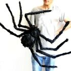 6.5ft/200cm Large Halloween Spider Home Garden Wall Party Web Hanging Prop Decor