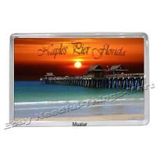 Souvenir magnete foto-Naples Pier Florida-foto MAGNET 5mm ACRILICO [m1] NUOVO